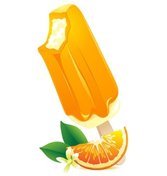 Orange Ice-cream with citrus slice Summer flavor vector image