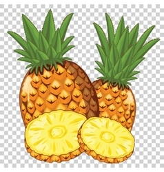 Pineapple Isolated vector