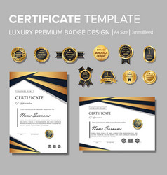 Professional luxury certificate with badge vector