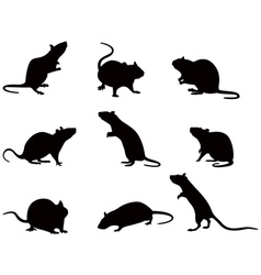 Silhouettes of rats vector image