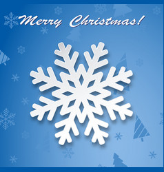 christmas background winter snowflake on greeting vector image