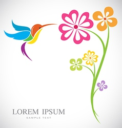 Design of hummingbird and flowers vector