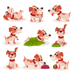 Funny jack russell terrier characters set cute vector