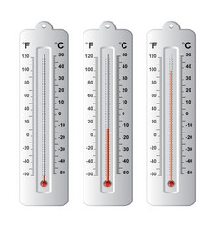 set thermometers at different levels vector image