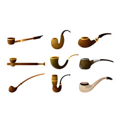 set wood smoking pipe gift for vip men vector image