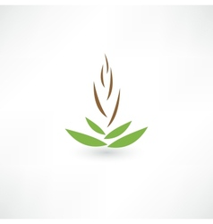 Spa concept icon vector