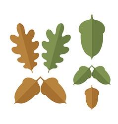 Acorn Set vector image