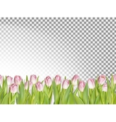 Spring seamless border background EPS 10 vector image