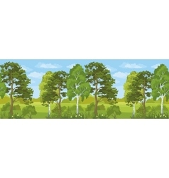 Seamless Horizontal Landscape Summer Forest vector image