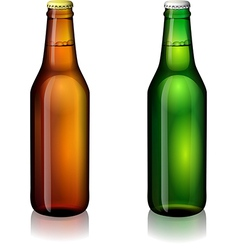 Beer bottle labels vector