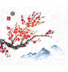 Cherry sakura tree branch in blossom and far blue vector