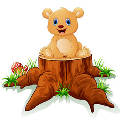 cute baby bear posing on tree stump vector image