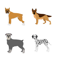 design of cute and icon collection of vector image