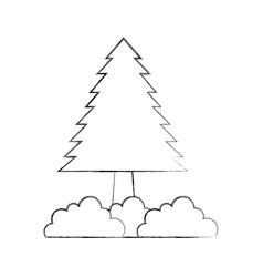 pine tree bushes forest natural flora image vector image