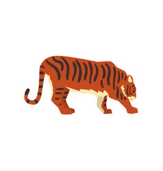 Powerful tiger side view wild cat predator vector