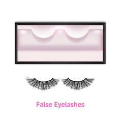 Realistic detailed 3d false eyelashes in package vector