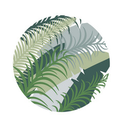 round tropical background with palm leaves image vector image