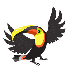 toucan macaw icon cartoon style vector image