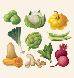 set of exotic vegetables vector image vector image