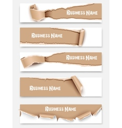 Set of torn paper banners vector image