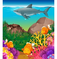 Shark and fish swimming in the sea vector image