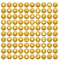 100 microbiology icons set gold vector