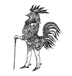 A rooster man with cane and boots in cowboy vector