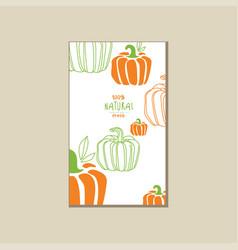 Bright vegetable card with pumpkins organic farm vector