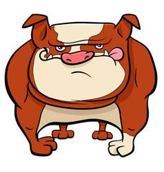 bulldog dog cartoon animal character vector image