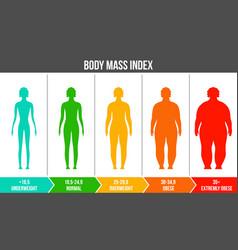 creative of bmi body mass vector image