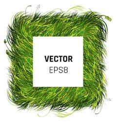 Green grass rectangle background vector
