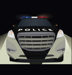 police car by night vector image