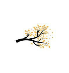 Sakura tree icon design template vector