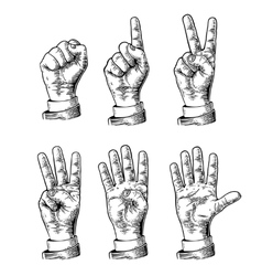 Set gestures of hands counting from zero to five vector