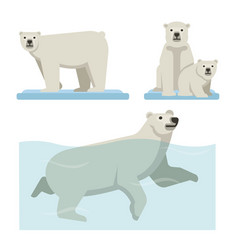 white polar bear set of wild life vector image