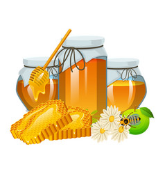 honey set bee and hive spoon and honeycomb hive vector image