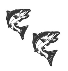salmon fish icons isolated on white background vector image