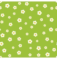 Camomile flower seamless pattern vector