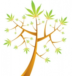 cannabis tree vector illustration vector image