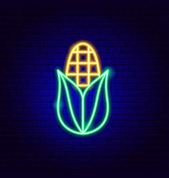 Corn neon sign vector
