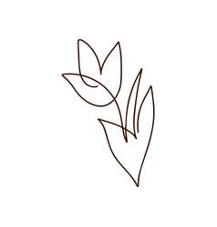 flower tulip one line art logo minimalist vector image