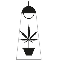 Marijuana grow box vector image
