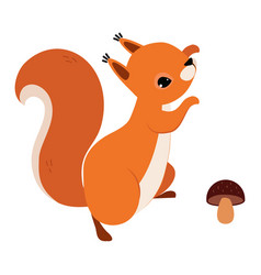 Red fluffy squirrel with bushy tail jumping near vector