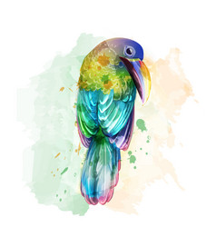tropic colorful parrot bird watercolor vector image
