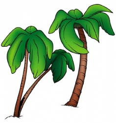 palms vector image