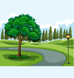 A green nature park vector
