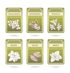 Collection of herbs labels vector image