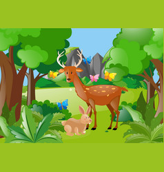Deer and rabbit in the woods vector