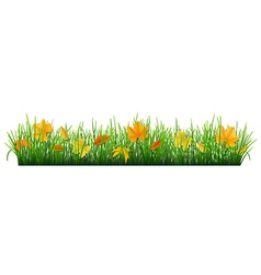 Fallen leaves in grass vector