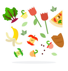 Food waste for trash sorting flat isolated vector